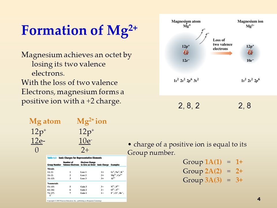 Formation of Mg 2+ Magnesium achieves an octet by losing its two valence electrons.