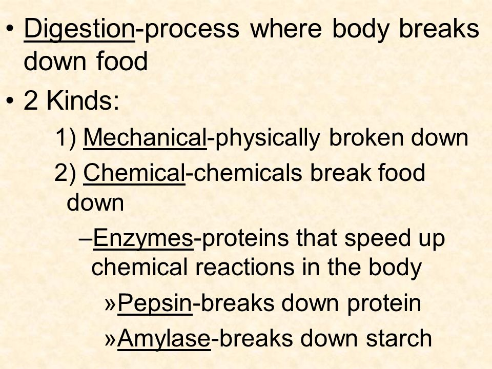Digestion-process where body breaks down food 2 Kinds: 1) Mechanical-physically broken down 2) Chemical-chemicals break food down –Enzymes-proteins that speed up chemical reactions in the body »Pepsin-breaks down protein »Amylase-breaks down starch