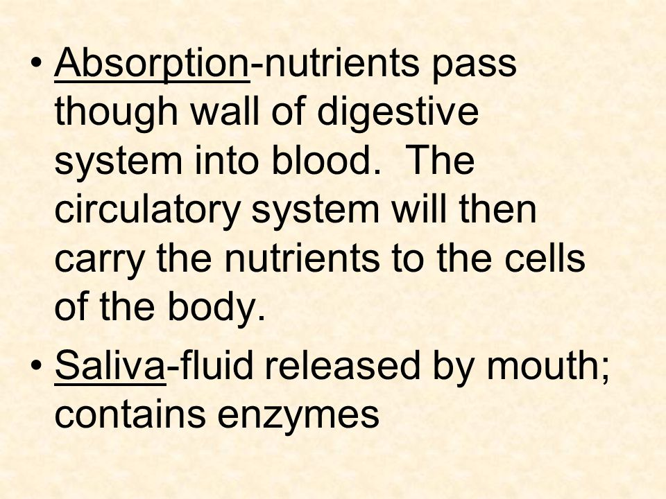 Absorption-nutrients pass though wall of digestive system into blood.