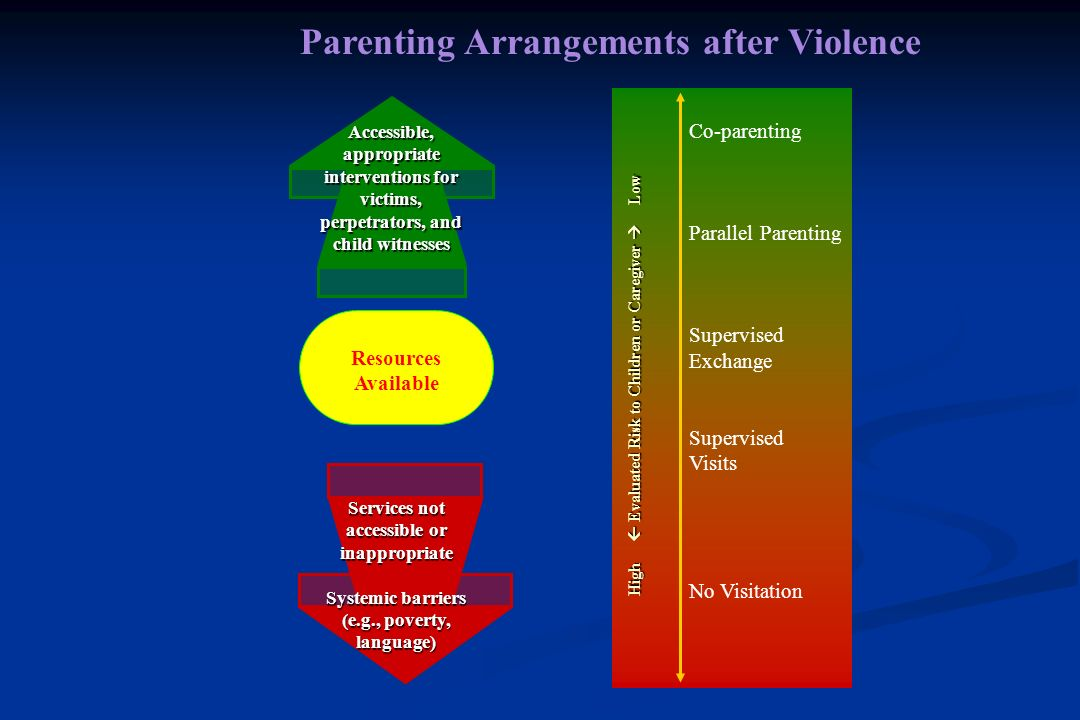 Making Appropriate Parenting Arrangements in Child Custody Disputes