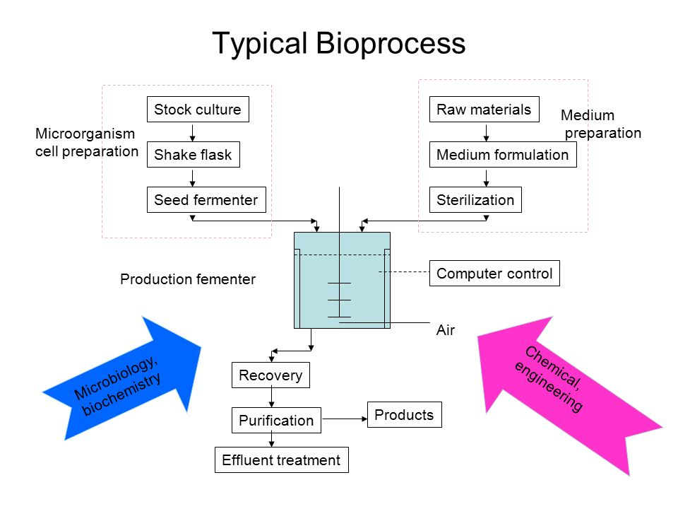 Typical Bioprocess Stock culture Shake flask Seed fermenter Raw materials Medium formulation Sterilization Computer control Production fementer Air Recovery Purification Products Effluent treatment Microbiology, biochemistry Chemical, engineering Microorganism cell preparation Medium preparation