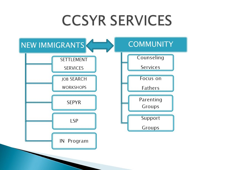NEW IMMIGRANTS SETTLEMENT SERVICES JOB SEARCH WORKSHOPS SEPYR LSPIN Program COMMUNITY Support Groups Focus on Fathers Parenting Groups Counseling Services
