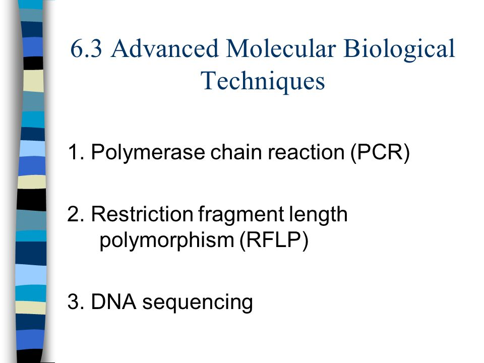 6.3 Advanced Molecular Biological Techniques 1. Polymerase chain reaction (PCR) 2.