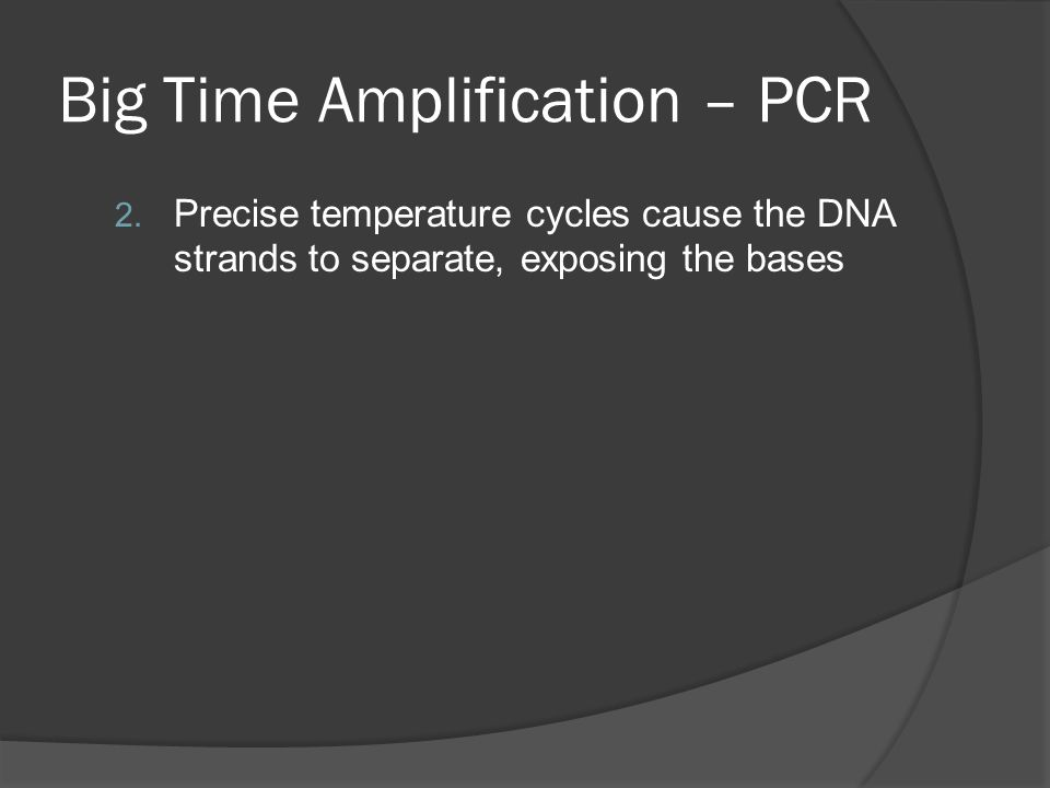 Big Time Amplification – PCR 2.