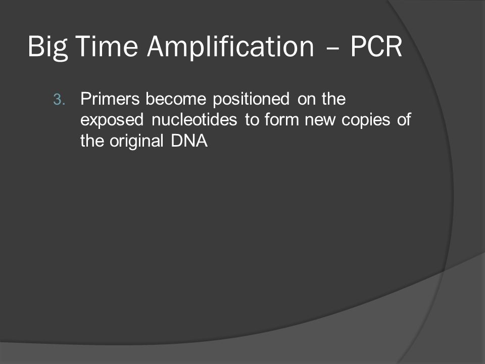 Big Time Amplification – PCR 3.