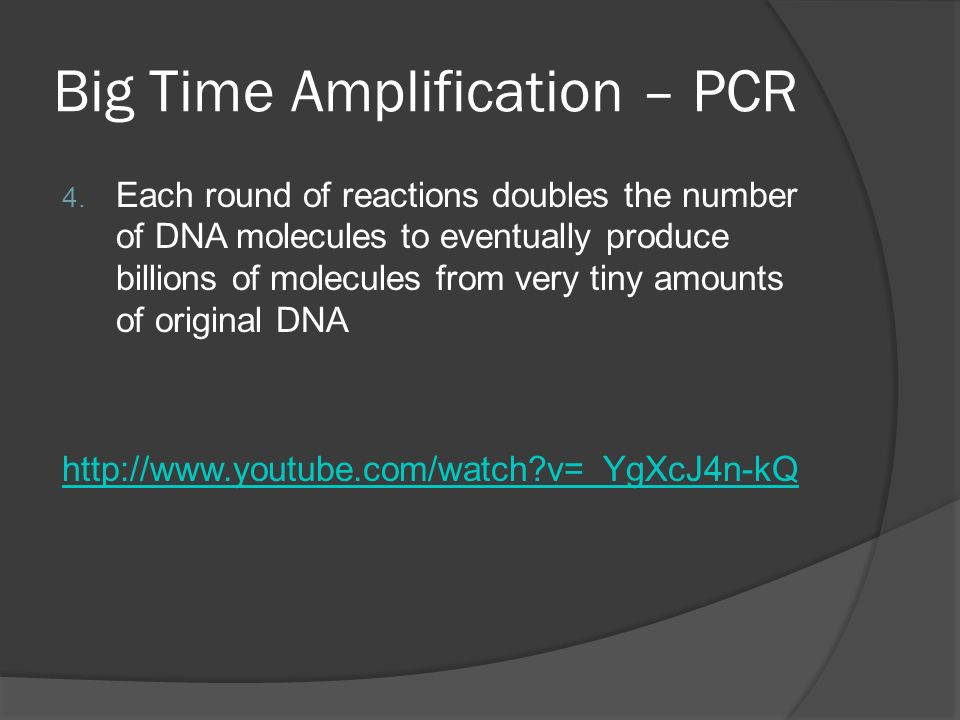 Big Time Amplification – PCR 4.