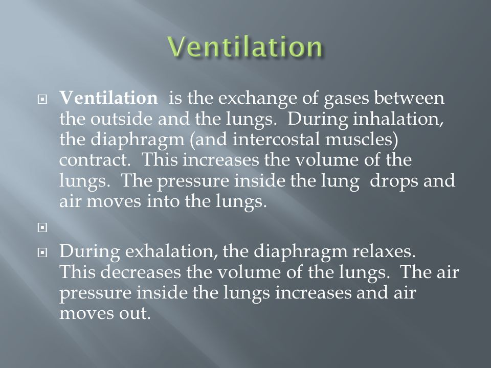  Ventilation is the exchange of gases between the outside and the lungs.