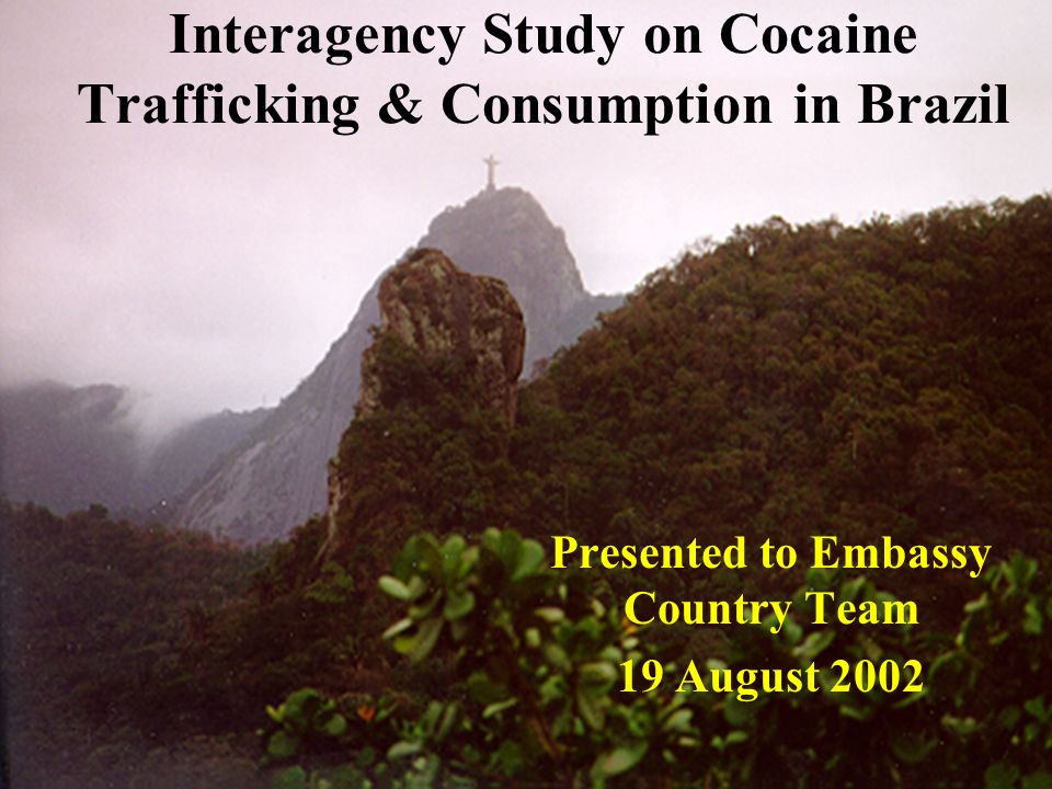 Interagency Study on Cocaine Trafficking & Consumption in Brazil Presented to Embassy Country Team 19 August 2002