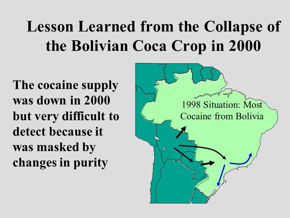 Lesson Learned from the Collapse of the Bolivian Coca Crop in 2000 The cocaine supply was down in 2000 but very difficult to detect because it was masked by changes in purity 1998 Situation: Most Cocaine from Bolivia