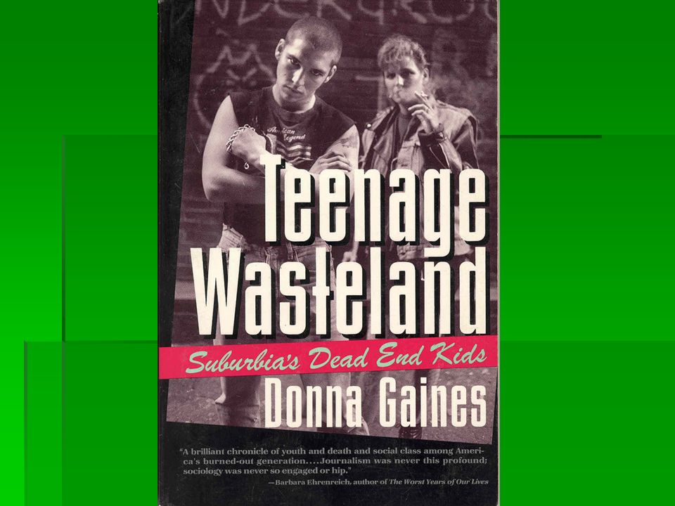 teenage wasteland anne tyler summary