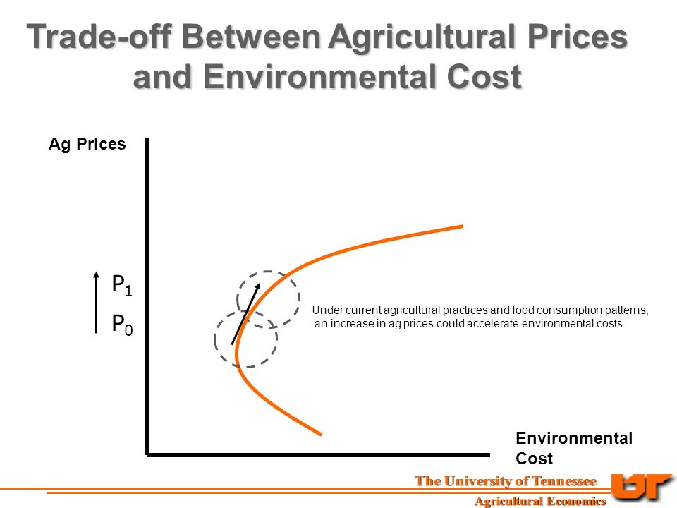 Ag Prices Environmental Cost Trade-off Between Agricultural Prices and Environmental Cost P0P0 P1P1 Under current agricultural practices and food consumption patterns, an increase in ag prices could accelerate environmental costs
