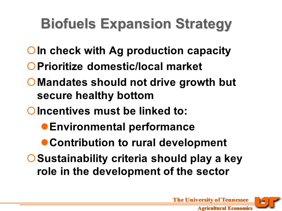Biofuels Expansion Strategy  In check with Ag production capacity  Prioritize domestic/local market  Mandates should not drive growth but secure healthy bottom  Incentives must be linked to: Environmental performance Contribution to rural development  Sustainability criteria should play a key role in the development of the sector