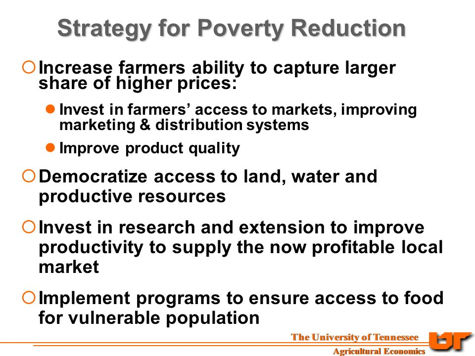 Strategy for Poverty Reduction  Increase farmers ability to capture larger share of higher prices: Invest in farmers' access to markets, improving marketing & distribution systems Improve product quality  Democratize access to land, water and productive resources  Invest in research and extension to improve productivity to supply the now profitable local market  Implement programs to ensure access to food for vulnerable population
