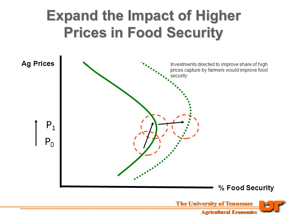 Expand the Impact of Higher Prices in Food Security Ag Prices % Food Security P0P0 P1P1 Investments directed to improve share of high prices capture by farmers would improve food security