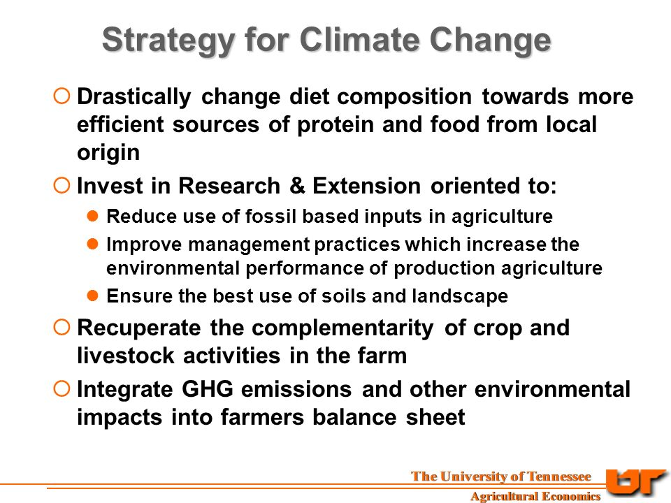 Strategy for Climate Change  Drastically change diet composition towards more efficient sources of protein and food from local origin  Invest in Research & Extension oriented to: Reduce use of fossil based inputs in agriculture Improve management practices which increase the environmental performance of production agriculture Ensure the best use of soils and landscape  Recuperate the complementarity of crop and livestock activities in the farm  Integrate GHG emissions and other environmental impacts into farmers balance sheet