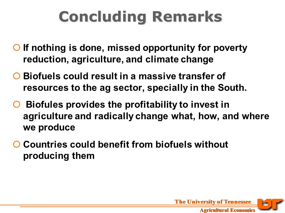 Concluding Remarks  If nothing is done, missed opportunity for poverty reduction, agriculture, and climate change  Biofuels could result in a massive transfer of resources to the ag sector, specially in the South.