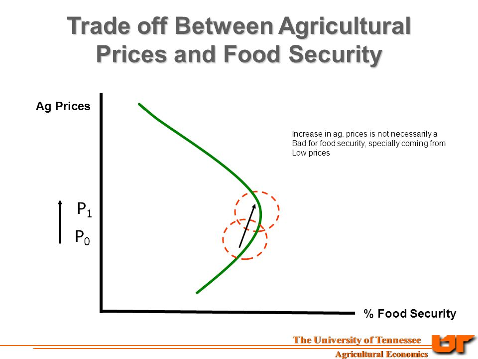 Trade off Between Agricultural Prices and Food Security Ag Prices % Food Security P0P0 P1P1 Increase in ag.