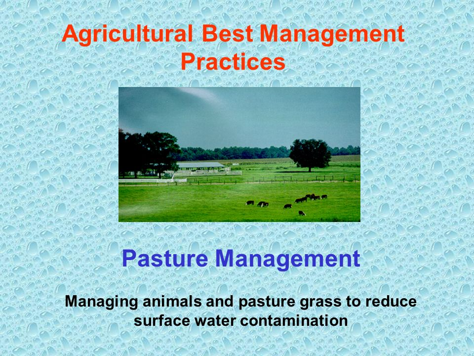 Agricultural Best Management Practices Pasture Management Managing animals and pasture grass to reduce surface water contamination