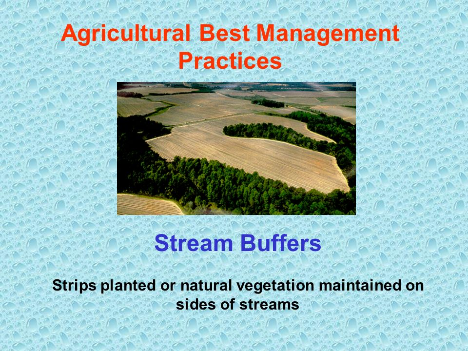 Agricultural Best Management Practices Stream Buffers Strips planted or natural vegetation maintained on sides of streams