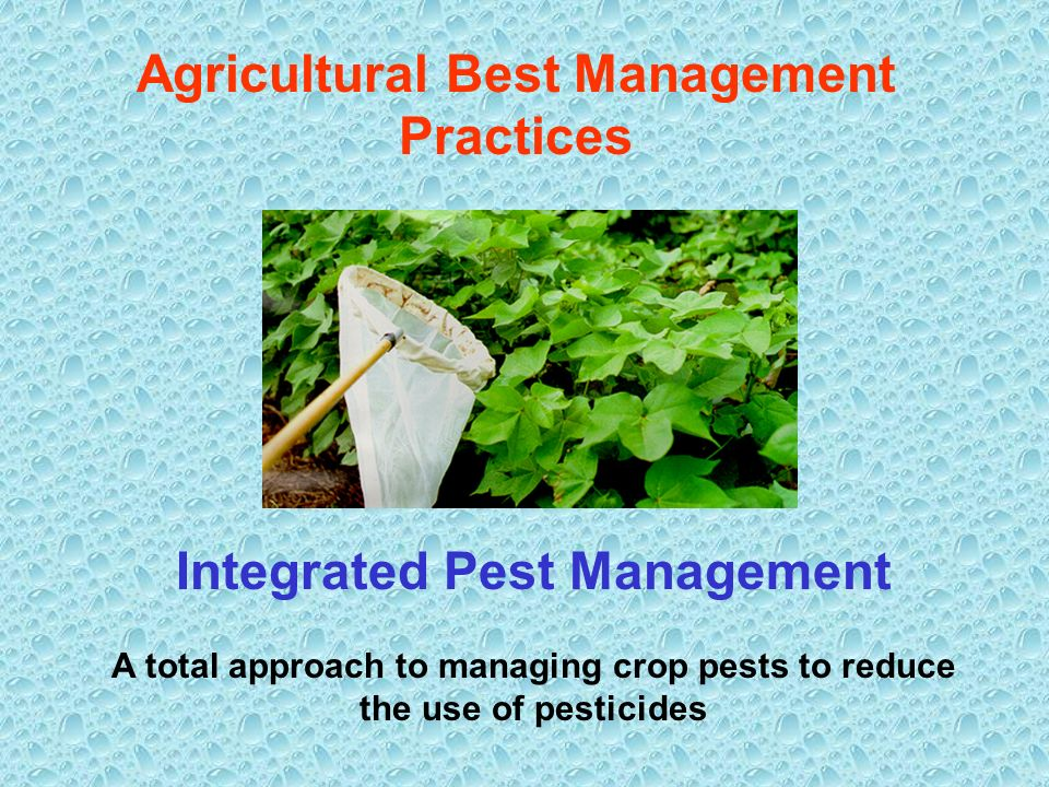 Agricultural Best Management Practices Integrated Pest Management A total approach to managing crop pests to reduce the use of pesticides