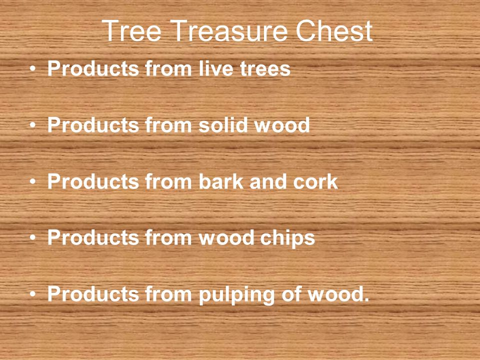 5 Tree Treasure Chest Products From Live Trees Solid Wood Bark And Cork Chips Pulping Of