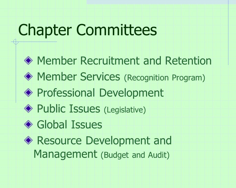 Chapter Committees Member Recruitment and Retention Member Services (Recognition Program) Professional Development Public Issues (Legislative) Global Issues Resource Development and Management (Budget and Audit)
