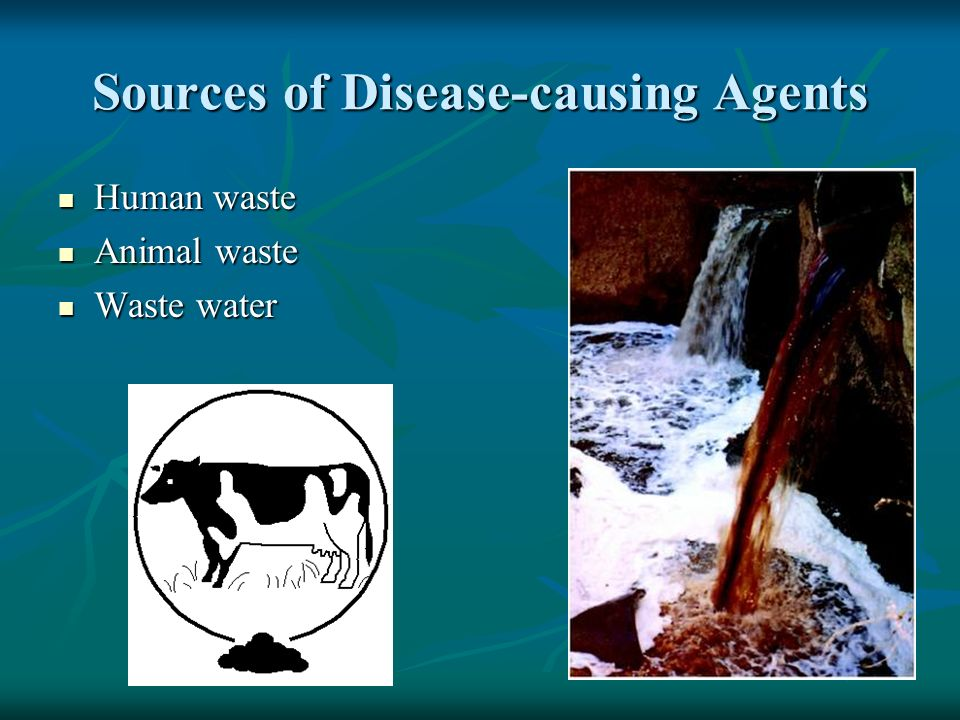 Sources of Disease-causing Agents Human waste Human waste Animal waste Animal waste Waste water Waste water