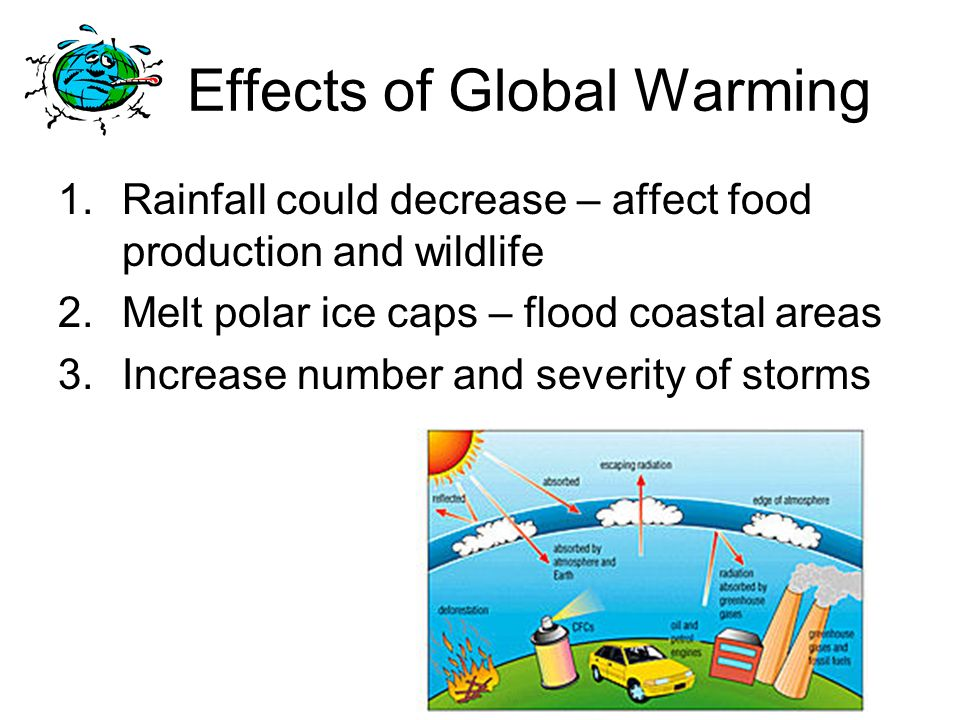Effects of Global Warming 1.Rainfall could decrease – affect food production and wildlife 2.Melt polar ice caps – flood coastal areas 3.Increase number and severity of storms