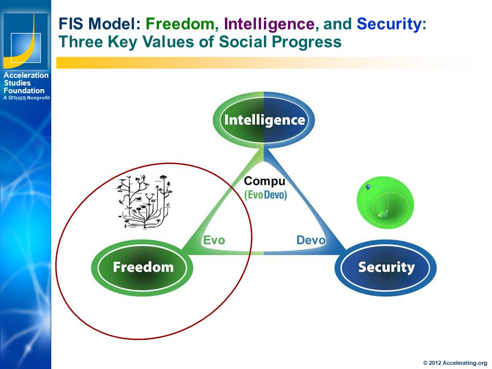 Los Angeles New York Palo Alto Acceleration Studies Foundation A 501 (c)(3) Nonprofit FIS Model: Freedom, Intelligence, and Security: Three Key Values of Social Progress © 2012 Accelerating.org
