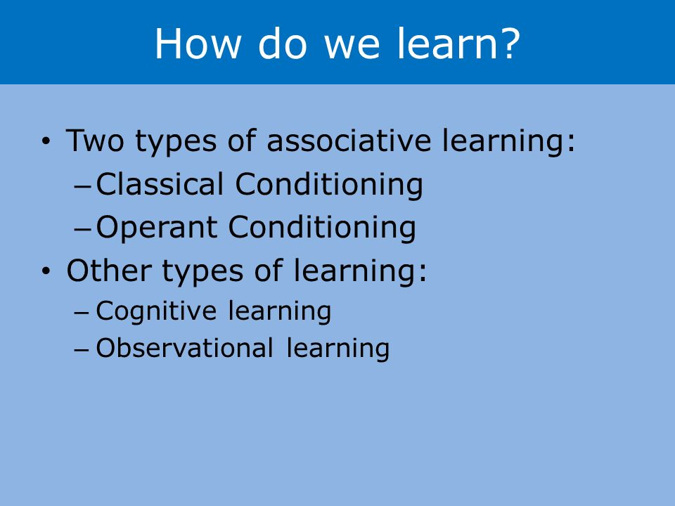 How do we learn.
