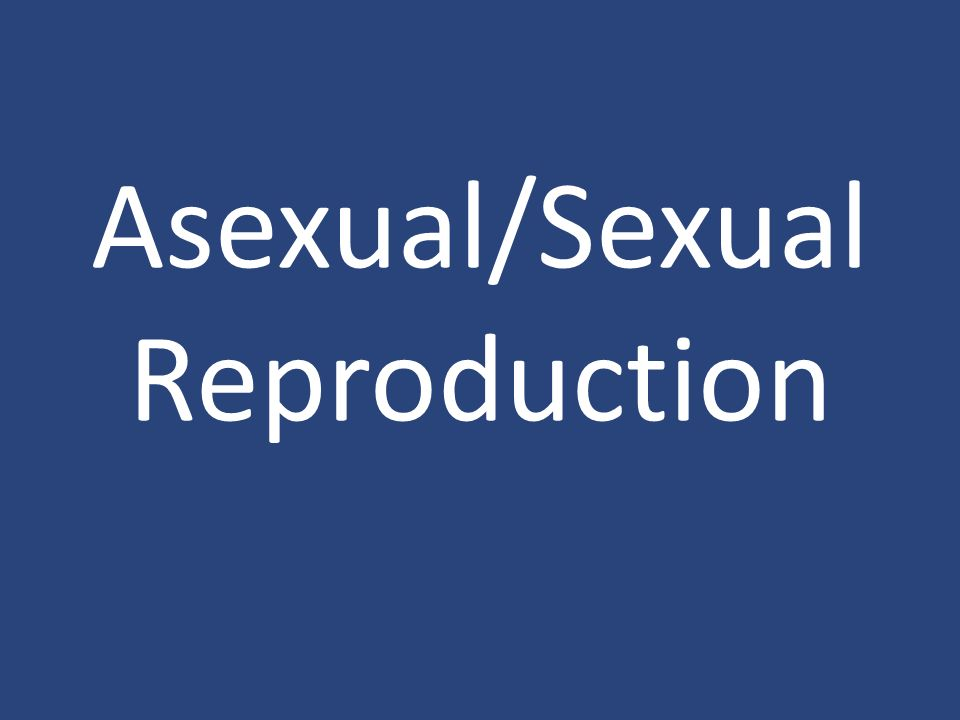 Conjugation involves asexual reproduction in bacteria