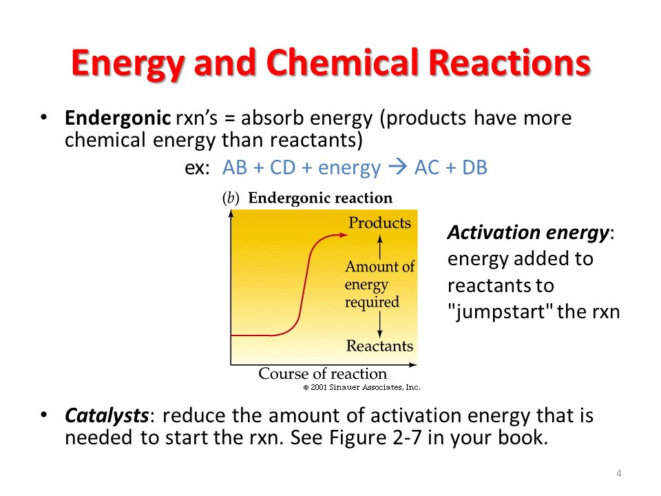 Energy and Chemical Reactions Endergonic rxn's = absorb energy (products have more chemical energy than reactants) ex: AB + CD + energy  AC + DB Catalysts: reduce the amount of activation energy that is needed to start the rxn.