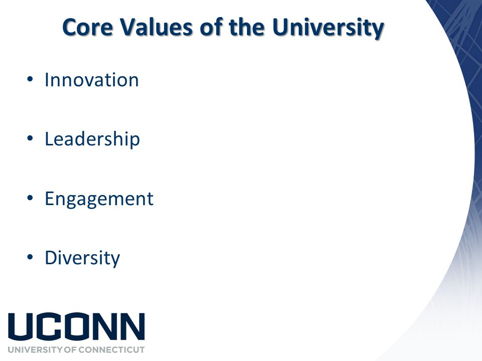 Core Values of the University Innovation Leadership Engagement Diversity
