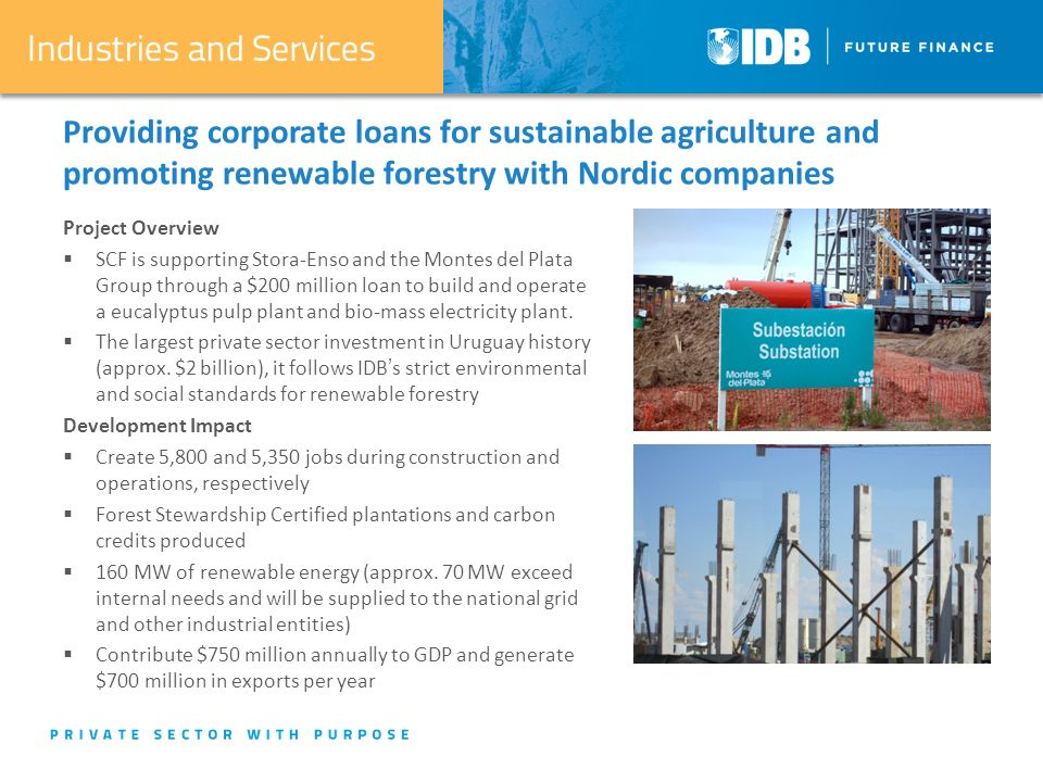 Providing corporate loans for sustainable agriculture and promoting renewable forestry with Nordic companies Project Overview  SCF is supporting Stora-Enso and the Montes del Plata Group through a $200 million loan to build and operate a eucalyptus pulp plant and bio-mass electricity plant.