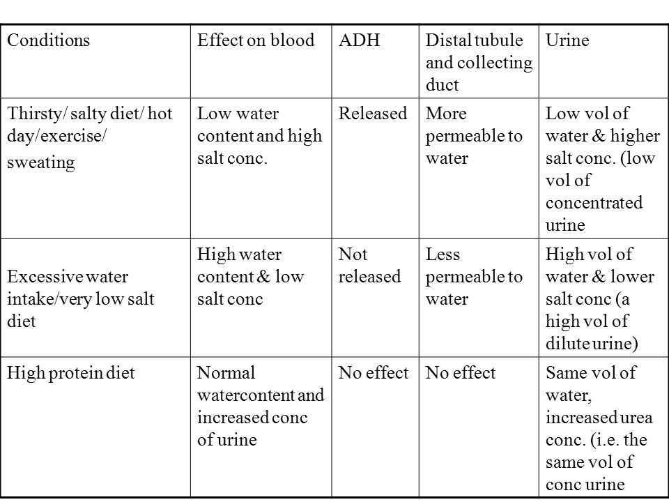 ConditionsEffect on bloodADHDistal tubule and collecting duct Urine Thirsty/ salty diet/ hot day/exercise/ sweating Low water content and high salt conc.