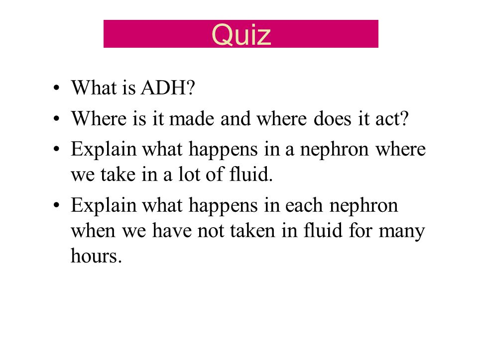 Quiz What is ADH. Where is it made and where does it act.