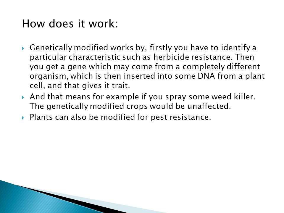How does it work:  Genetically modified works by, firstly you have to identify a particular characteristic such as herbicide resistance.
