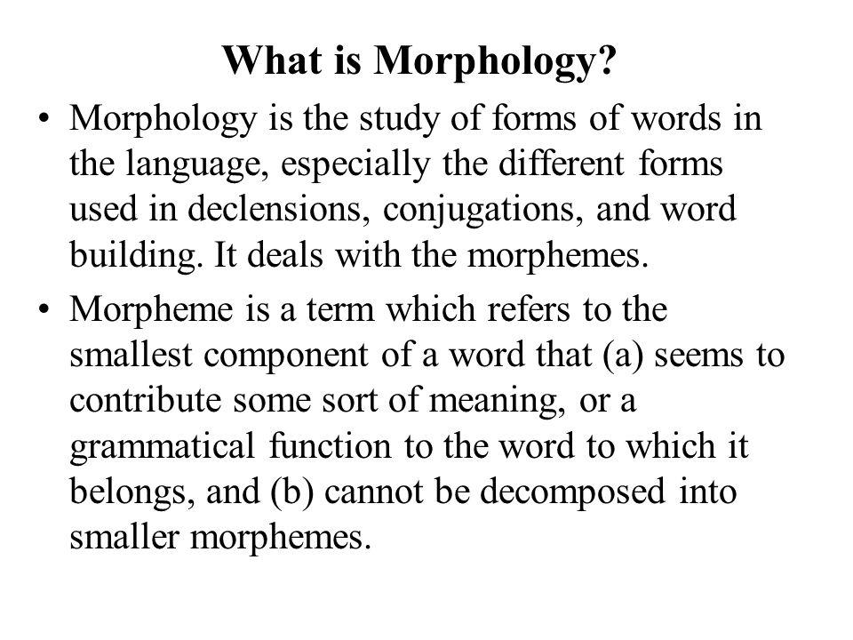 Morphology For Marathi POS-Tagger Veena Dixit 11/ 10 / ppt