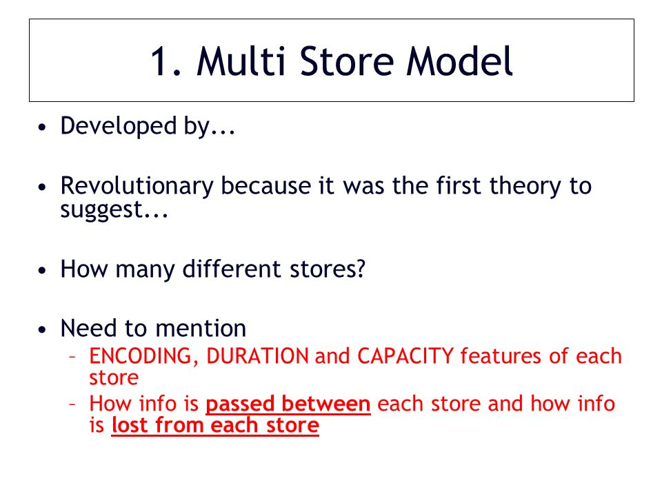 1. Multi Store Model Developed by... Revolutionary because it was the first theory to suggest...