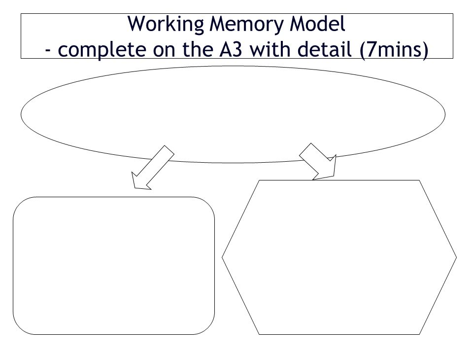 Working Memory Model - complete on the A3 with detail (7mins)