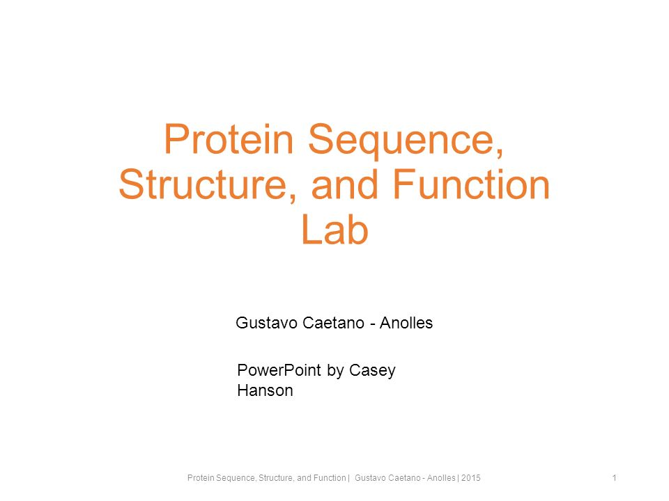 Protein Sequence, Structure, and Function Lab Gustavo Caetano - Anolles 1 PowerPoint by Casey Hanson Protein Sequence, Structure, and Function | Gustavo Caetano - Anolles | 2015