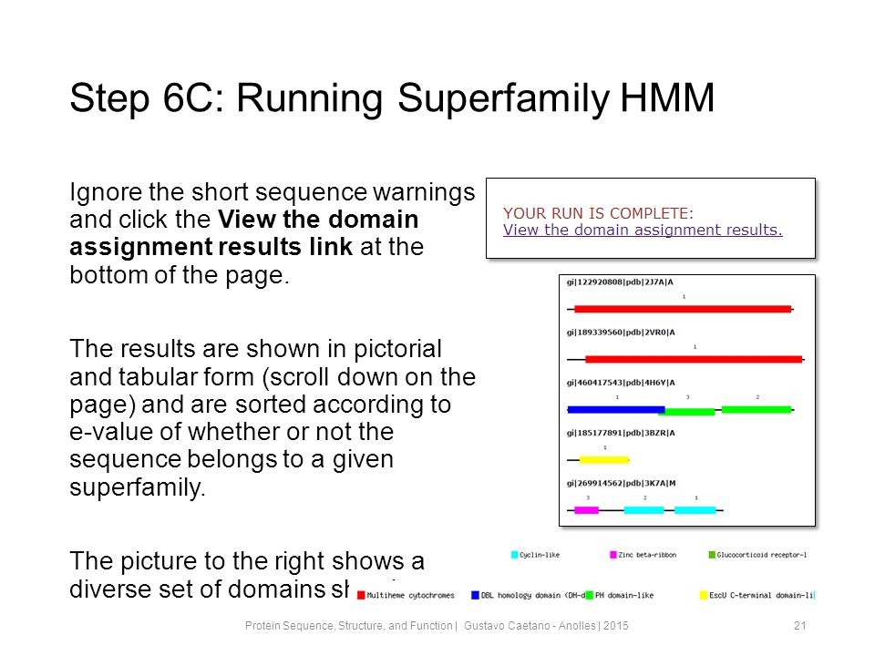 Step 6C: Running Superfamily HMM Ignore the short sequence warnings and click the View the domain assignment results link at the bottom of the page.