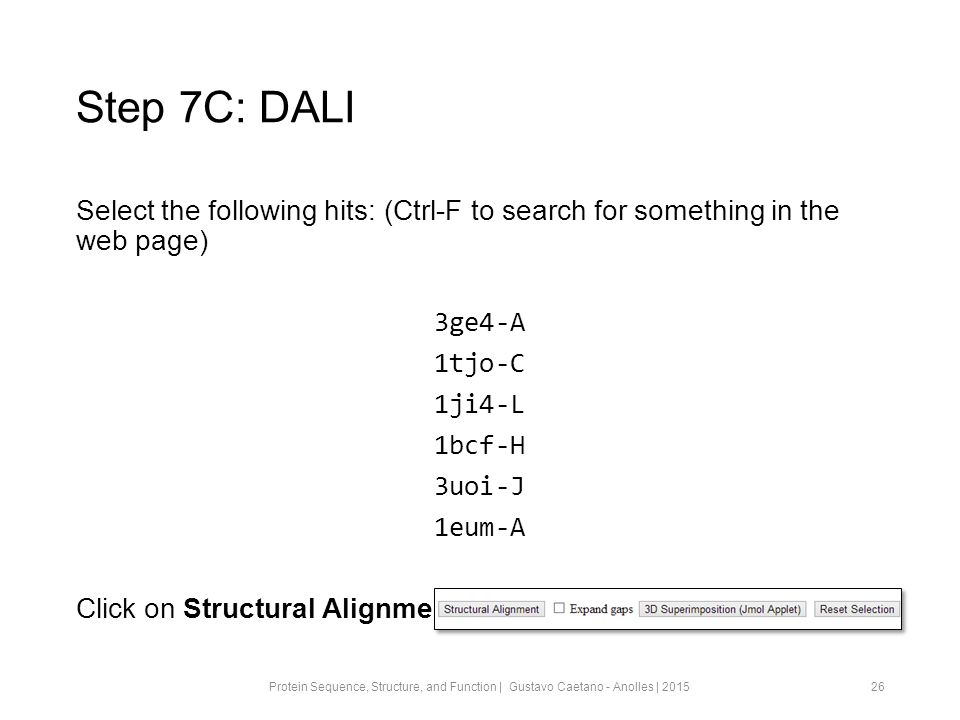 Step 7C: DALI Select the following hits: (Ctrl-F to search for something in the web page) 3ge4-A 1tjo-C 1ji4-L 1bcf-H 3uoi-J 1eum-A Click on Structural Alignment 26Protein Sequence, Structure, and Function | Gustavo Caetano - Anolles | 2015