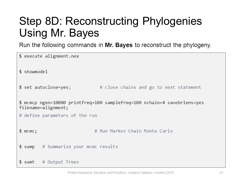 Step 8D: Reconstructing Phylogenies Using Mr.