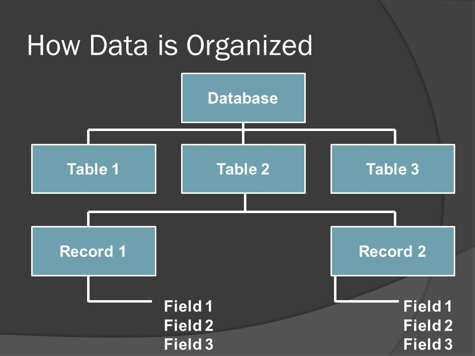 6 how data is organized database table 1table 3table 2 record 2record 1 field 1 field 2 field 3 field 1 field 2 field 3