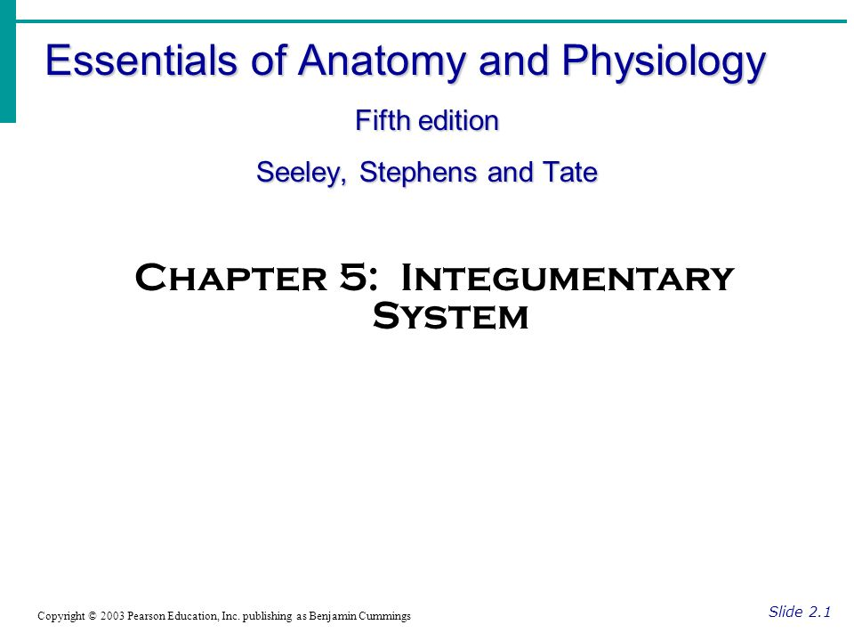 Essentials of Anatomy and Physiology Fifth edition Seeley, Stephens ...