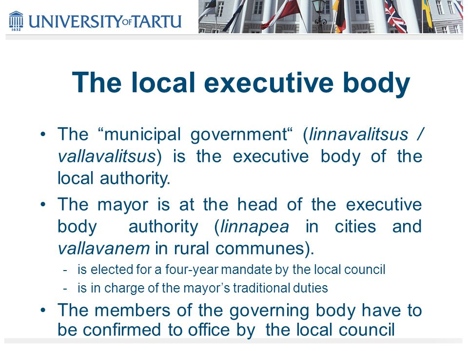 The local executive body The municipal government (linnavalitsus / vallavalitsus) is the executive body of the local authority.