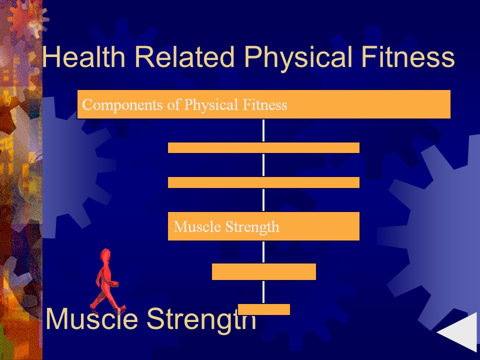 Muscle Strength Health Related Physical Fitness