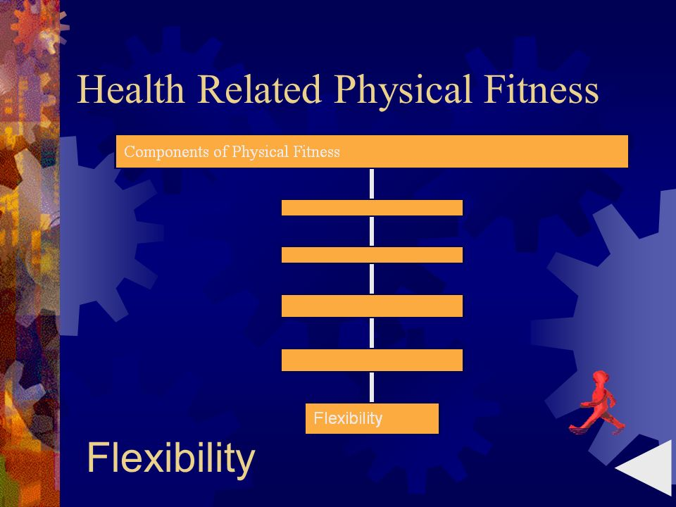 Health Related Physical Fitness Flexibility