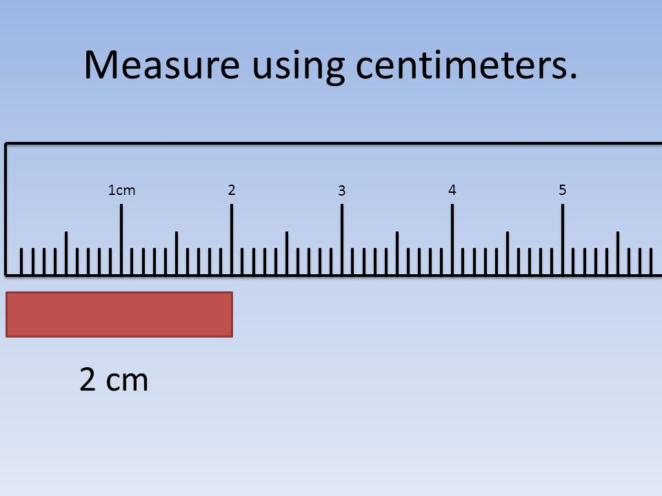 Image result for 2 centimeters